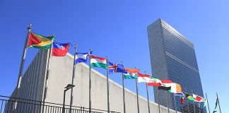United Nations Careers 2022